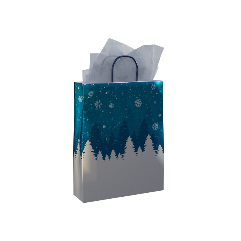 gift-bag-paper-handle-shop-buy-4724437