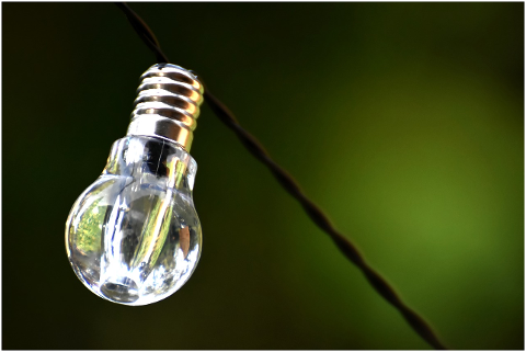 light-bulb-energy-nature-4359730