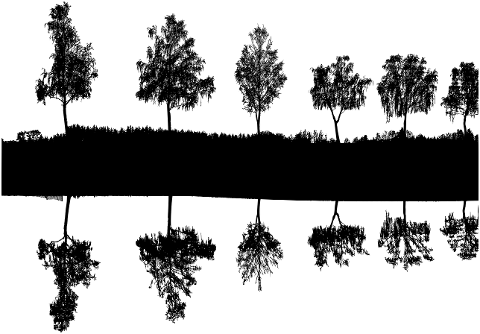 trees-lake-silhouette-landscape-6028810