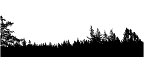forest-trees-panorama-silhouette-4321419