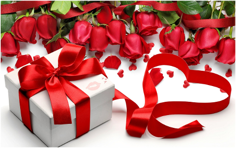 gift-roses-ribbon-bow-flowers-6137052