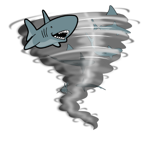 tornado-sharks-weather-storm-fish-4391271