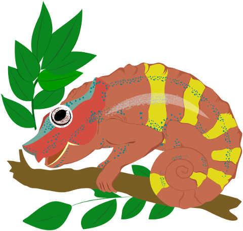animal-chameleon-icon-wild-reptile-5821697