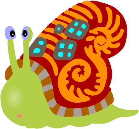 snail-shell-animal-mollusc-slow-6180911