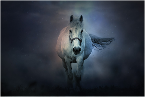 fantasy-horse-animals-mystic-magic-4284821