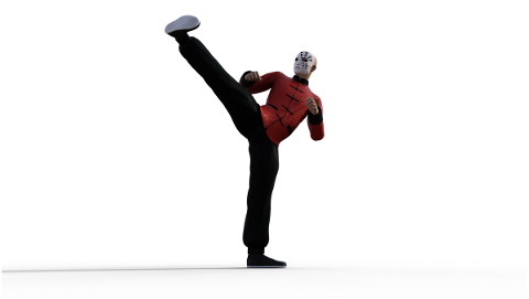 kung-fu-martial-arts-pose-fighter-4938578