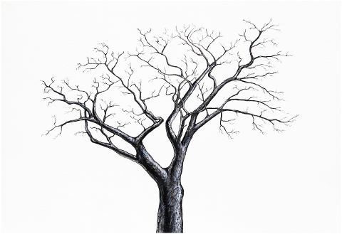 tree-winter-one-painting-drawing-4460149
