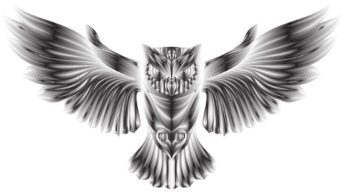 owl-bird-geometric-animal-wings-5986451