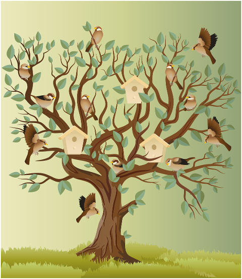 birds-sparrow-tree-perched-6161929