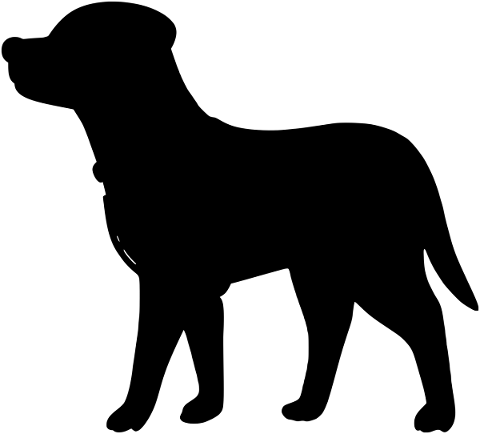 dog-puppy-silhouette-animal-4971630