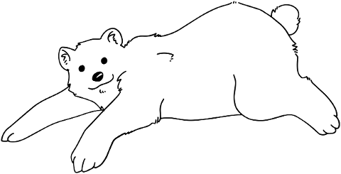polar-bear-animal-line-art-bear-6137666
