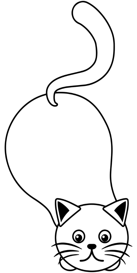 cat-pet-line-art-cat-line-art-5890013
