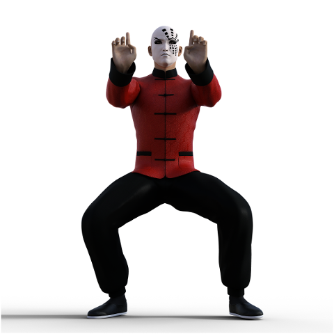 kung-fu-martial-arts-pose-fighter-4938561