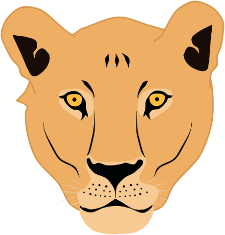 lioness-face-lion-cat-animal-5399587