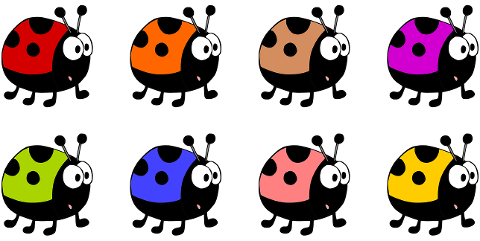 ladybugs-beetles-insects-animals-6184290
