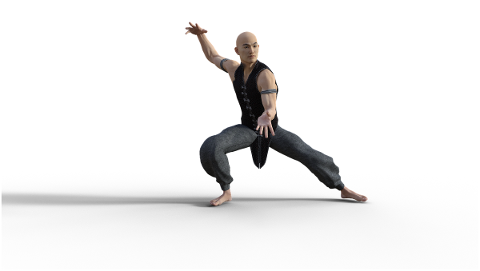 kung-fu-martial-arts-pose-fighter-4938613