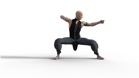 kung-fu-martial-arts-pose-fighter-4938609