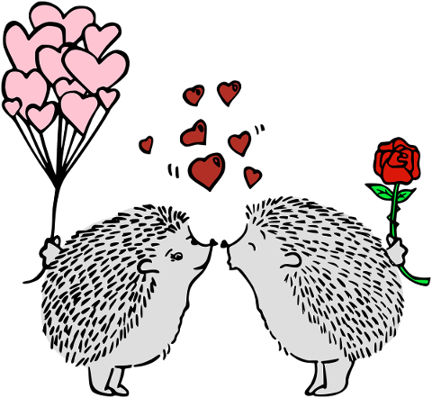 hedgehogs-couple-balloons-rose-5548117