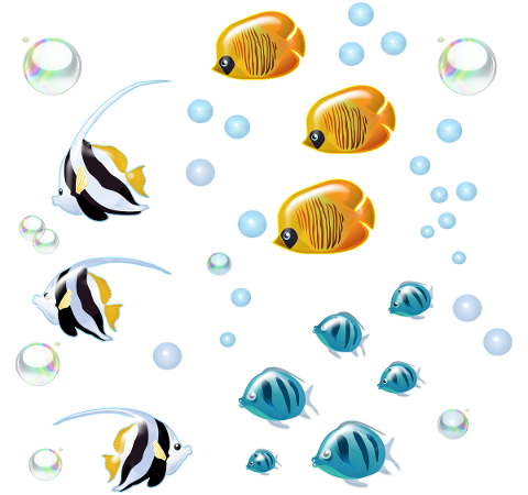 underwater-fish-bubbles-swimming-4774260