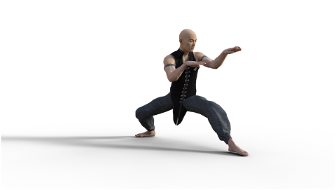 kung-fu-martial-arts-pose-fighter-4938608