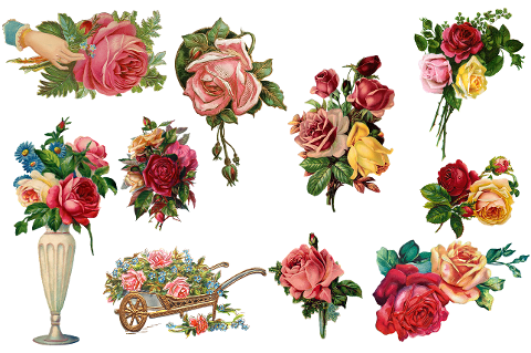 vintage-roses-flowers-collection-6018554