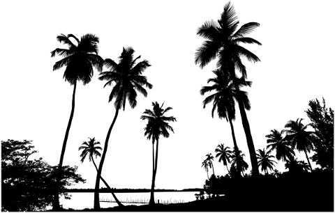 silhouette-tropical-palm-trees-5733955