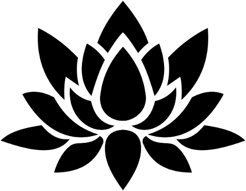lotus-flower-silhouette-floral-4776450