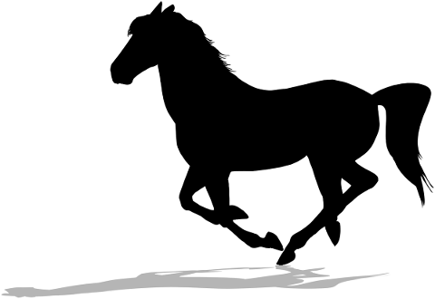 horse-silhouette-shadow-trotting-4900852