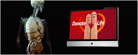 organ-donation-heart-finger-live-4301529
