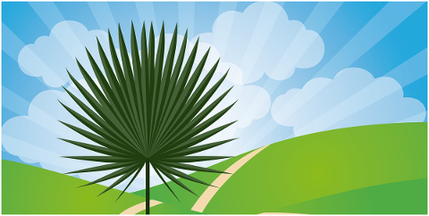 palm-sunday-palm-tree-psalm-sunday-5009429