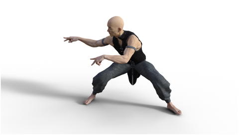 kung-fu-martial-arts-pose-fighter-4938618