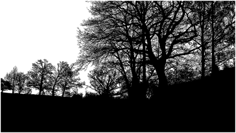trees-landscape-silhouette-forest-5118296