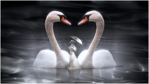 fantasy-swan-woman-screen-white-4307848