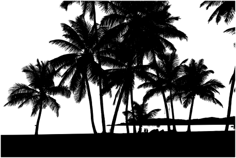 tropical-trees-silhouette-beach-5161206