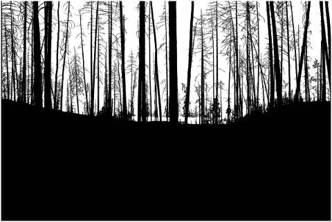 trees-landscape-silhouette-forest-5118242