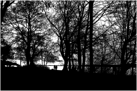 trees-landscape-silhouette-lake-5118475