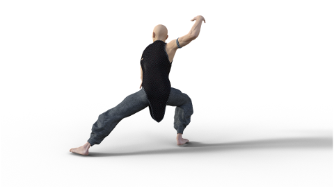 kung-fu-martial-arts-pose-fighter-4938615